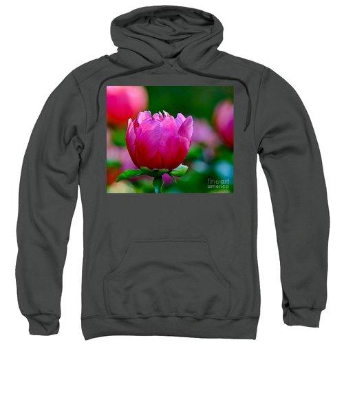 Vibrant Pink Peony Sweatshirt