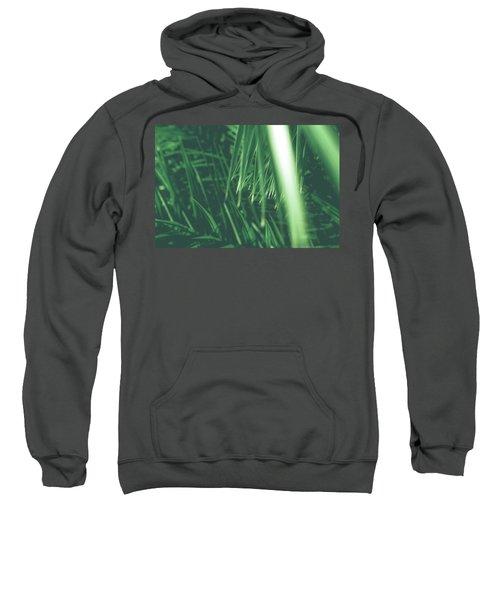 Vintage Palms Iv Sweatshirt