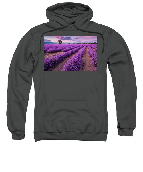 Sweatshirt featuring the photograph Violet Dreams by Evgeni Dinev
