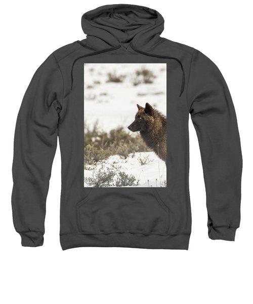 W11 Sweatshirt