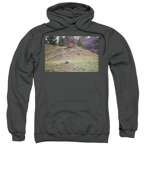 W22 Sweatshirt