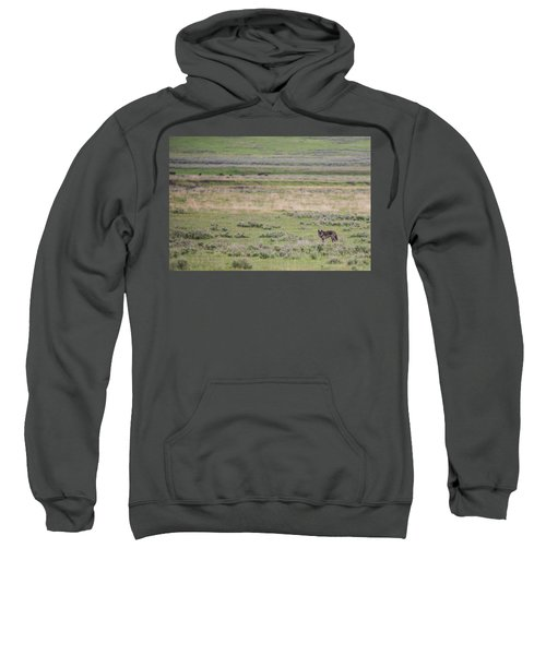 W26 Sweatshirt