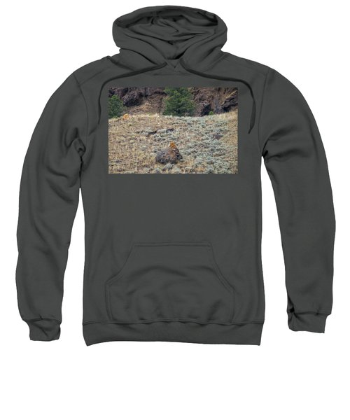 W32 Sweatshirt