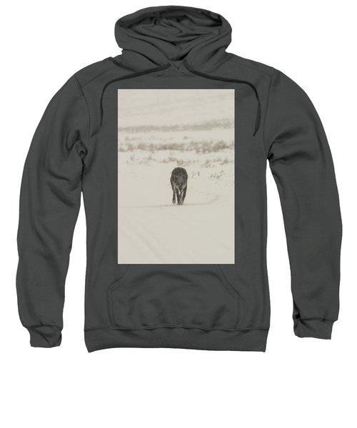 W33 Sweatshirt