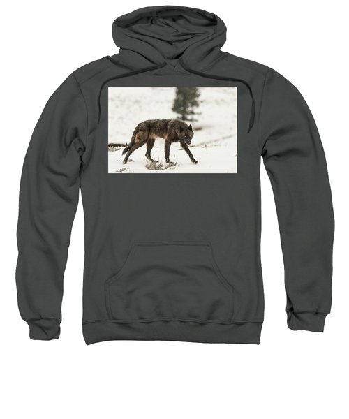 W42 Sweatshirt
