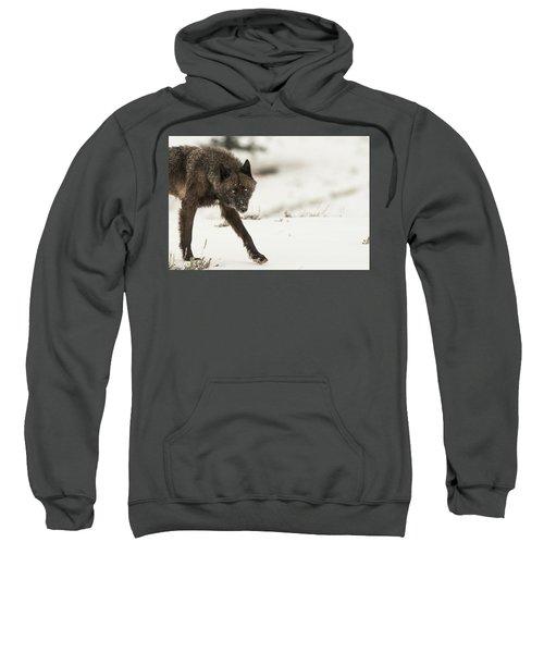 W43 Sweatshirt