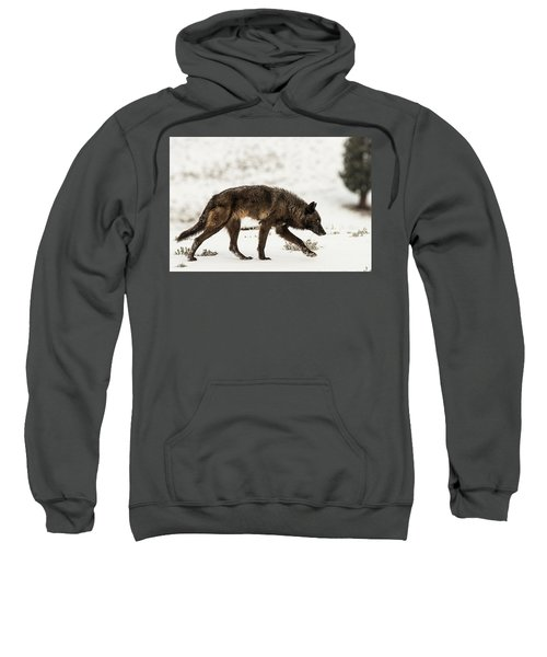 W44 Sweatshirt