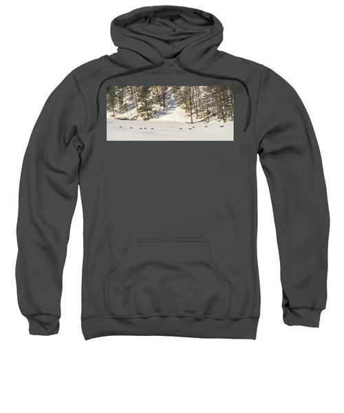 W48 Sweatshirt