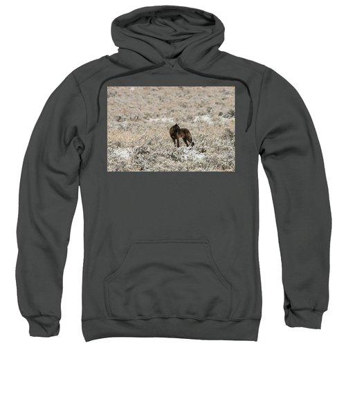 W49 Sweatshirt