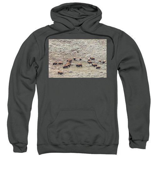 W56 Sweatshirt