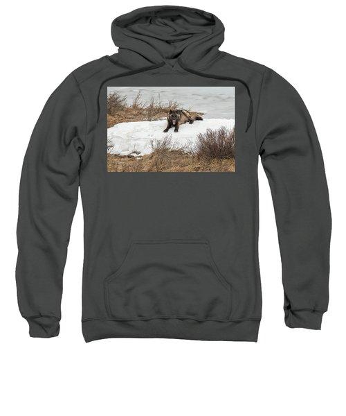 W57 Sweatshirt