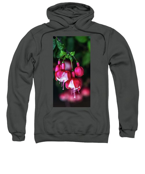 Wallpaper Flower Sweatshirt