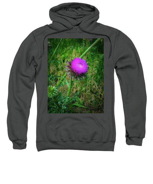 Wanna Be In Scotland Sweatshirt