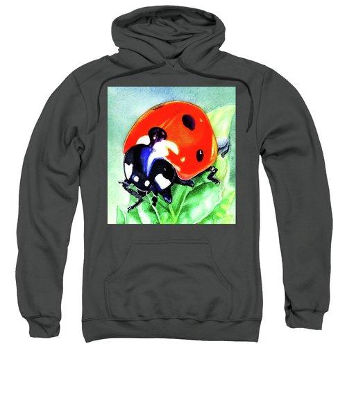 Watercolor Ladybug Sweatshirt