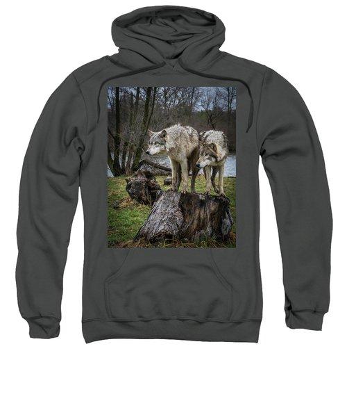 What Ya Think Sweatshirt