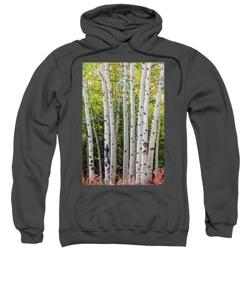 Sweatshirt featuring the photograph White Bark Golden Forest by James BO Insogna
