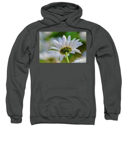 Fresh As A Daisy Sweatshirt
