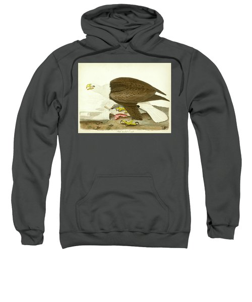 White-headed Eagle Sweatshirt