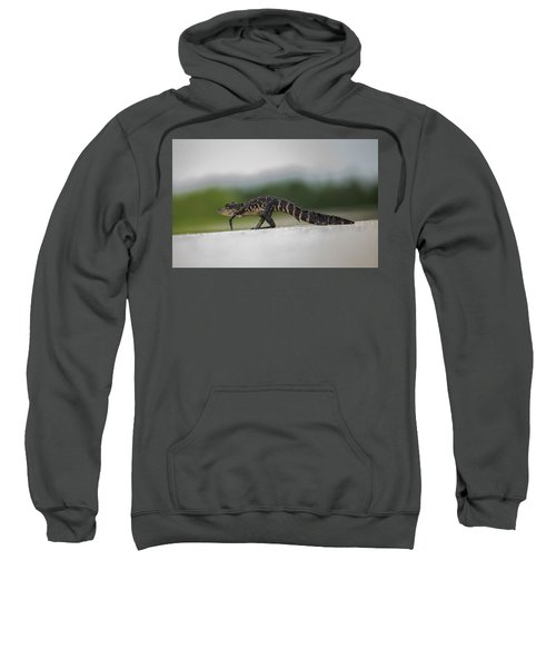 Why Did The Gator Cross The Road? Sweatshirt