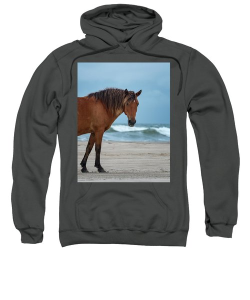 Wild Colonial Spanish Mustang Of Carova Stormy Skies Sweatshirt