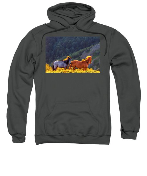 Sweatshirt featuring the photograph Wild Horses by Evgeni Dinev
