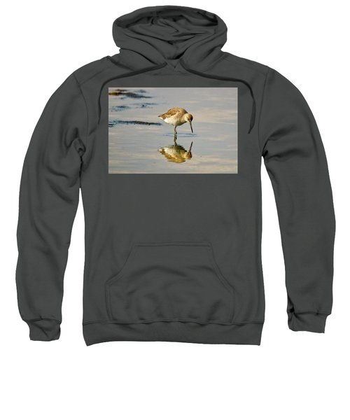 Willet Sees Its Reflection Sweatshirt