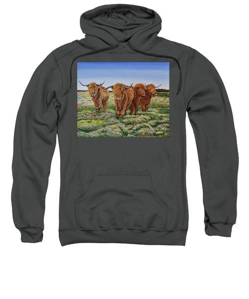 Windswept Highland Cattle  Sweatshirt