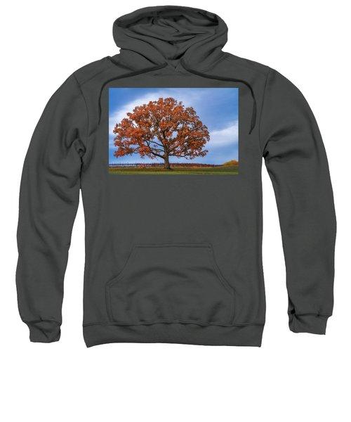 Wine Time Sweatshirt