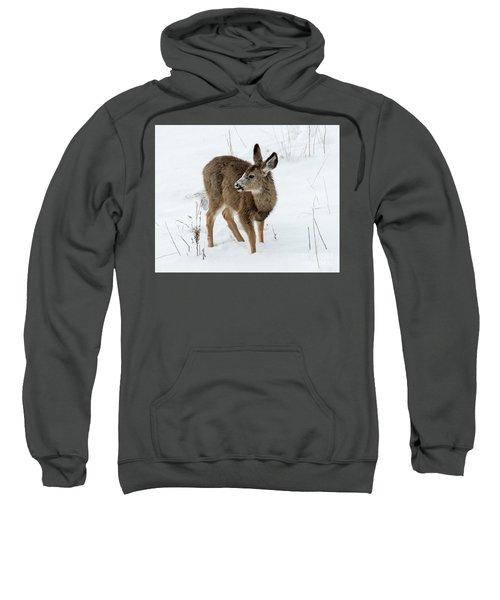 Winter Bambi Sweatshirt