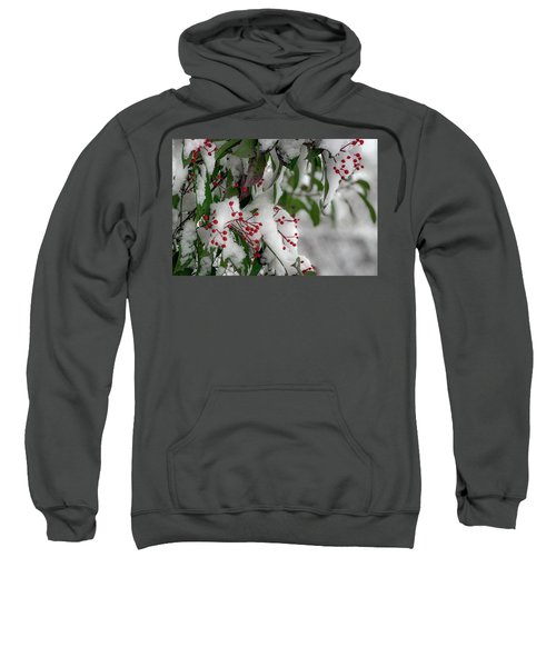 Winter Berries Sweatshirt