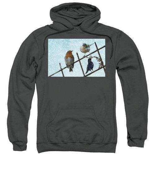 Winter Birds Sweatshirt