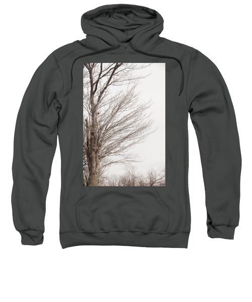 Winter Hoarfrost Sweatshirt