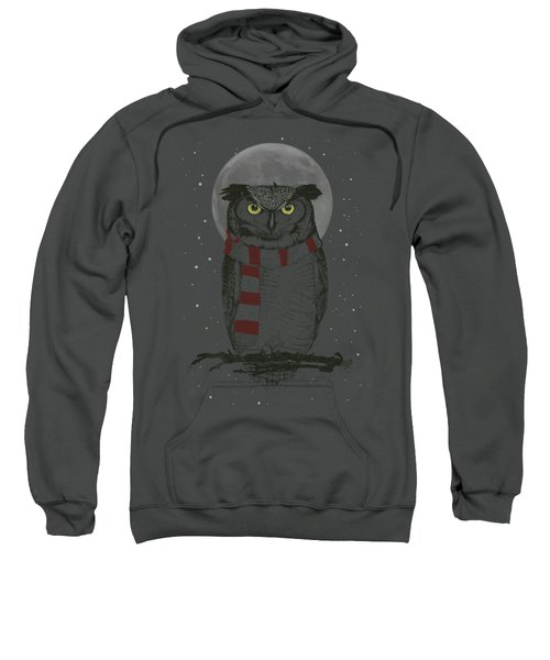 Winter Owl Sweatshirt
