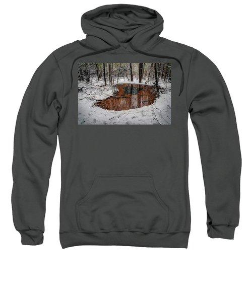 Winter Reflections Sweatshirt
