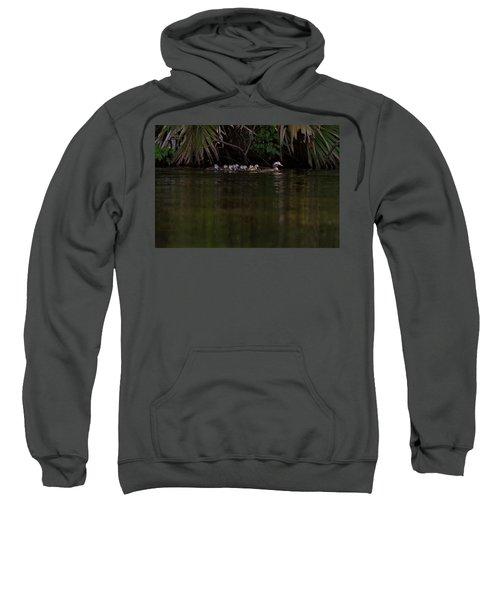 Wood Duck And Ducklings Sweatshirt