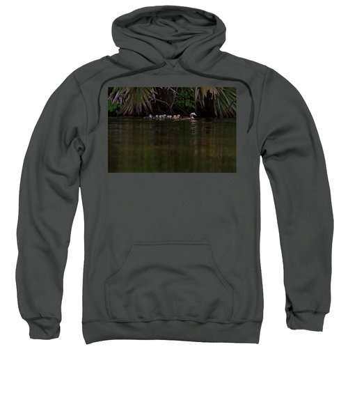 Wood Duck And Ducklings Sweatshirt