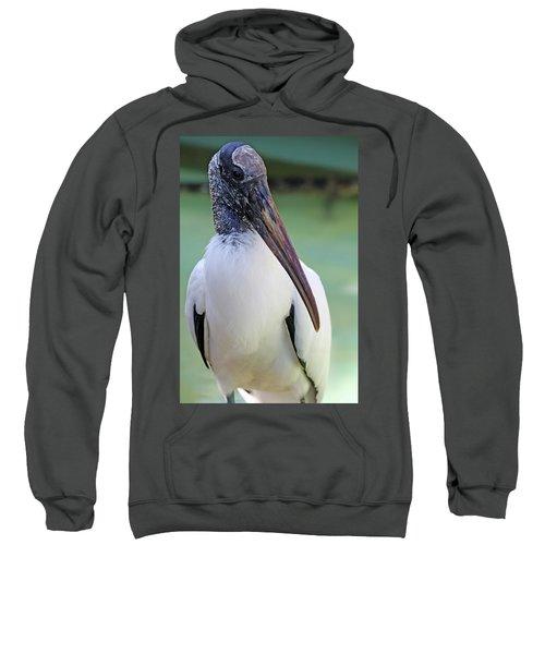 Wood Stork 40312 Sweatshirt