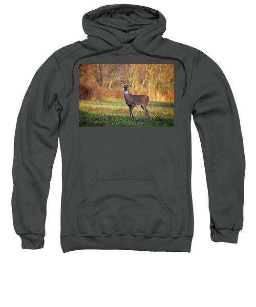 Young Buck Sweatshirt