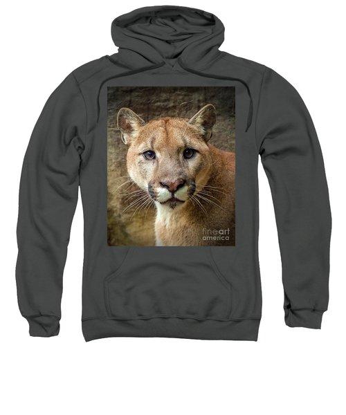 Young Puma Sweatshirt