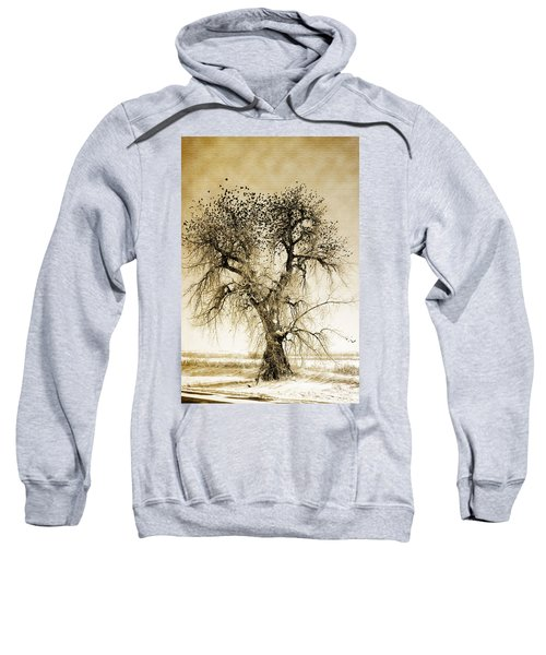 Bird Tree Fine Art  Mono Tone And Textured Sweatshirt
