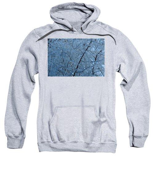 Vegetation After Ice Storm  Sweatshirt