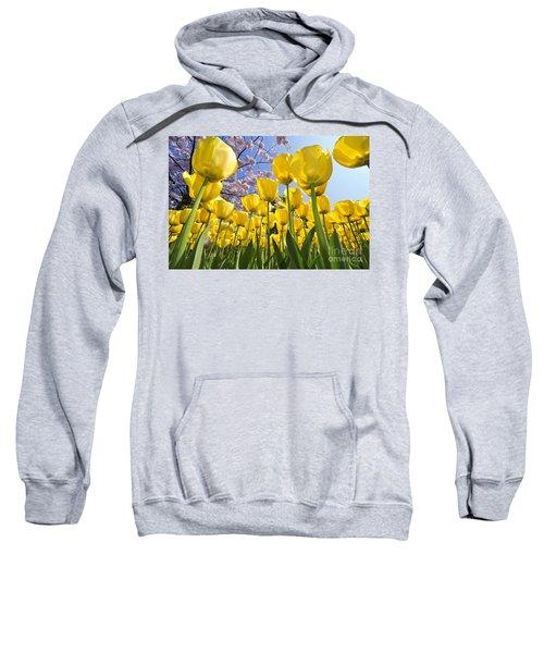 090416p030 Sweatshirt