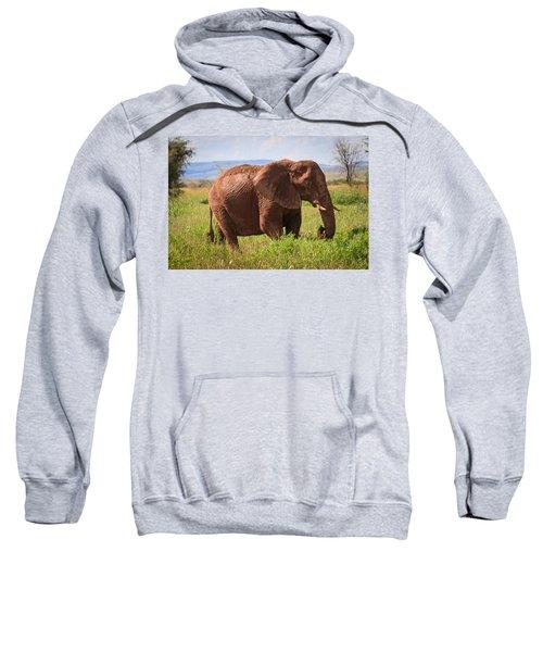 African Desert Elephant Sweatshirt