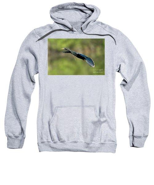 Anhinga Sweatshirt by Anthony Mercieca