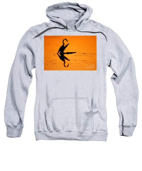Anhinga Sweatshirt by Art Wolfe