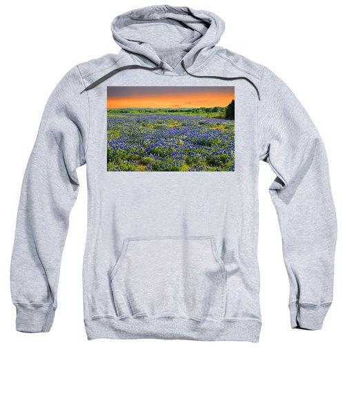 Bluebonnet Sunset  Sweatshirt