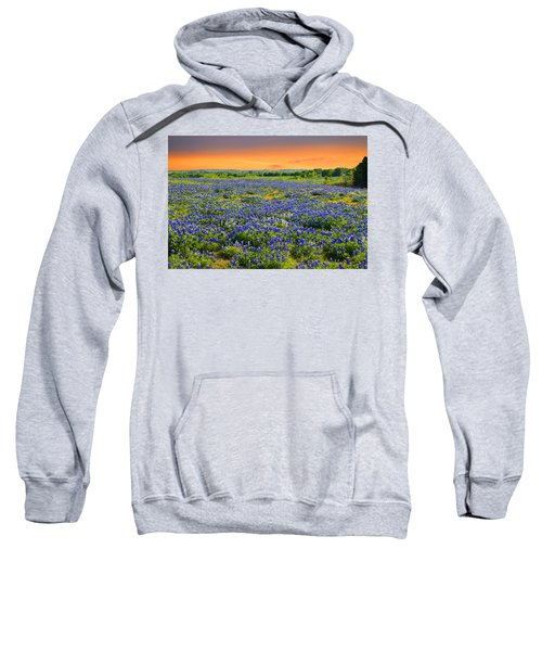 Bluebonnet Sunset  Sweatshirt