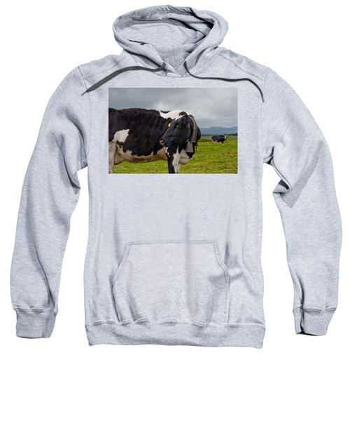 Sweatshirt featuring the photograph Cow Wearing Cowbell  by Joseph Amaral