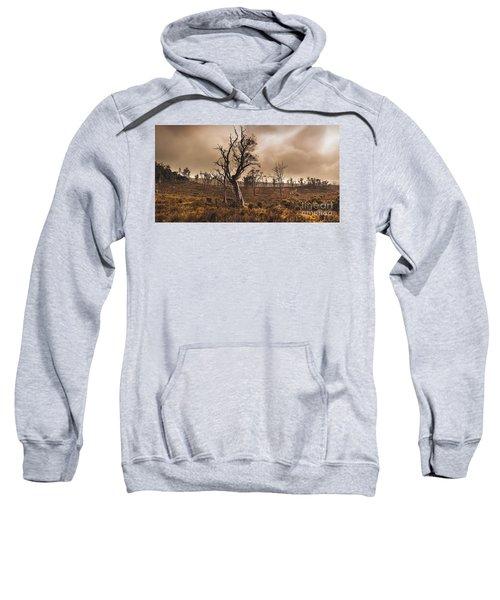 Dark Horror Landscape Of A Creepy Haunted Forest Sweatshirt