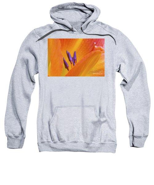 Day Lily  2 Sweatshirt